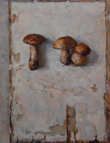 Funghi  |  Private Collection