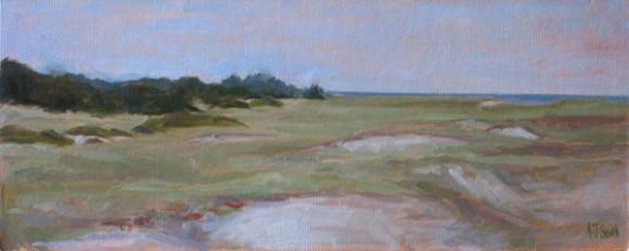 Nantucket Dunes